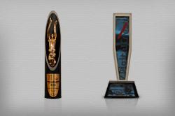 Awards for www.rethink1000days.org